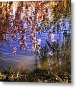 Cherry Blossoms In The Sun - New York City Metal Print by Vivienne Gucwa