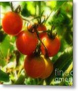 Cherry Tomatoes On The Vine Metal Print