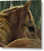 Chestnut Dreams Metal Print
