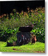 Chickens Of The Corn Metal Print