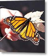 Child With Butterfly Metal Print