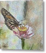 Chinese Butterfly Metal Print