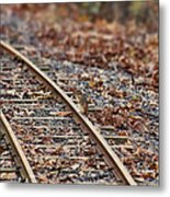 Chipmunk On The Railroad Track Metal Print