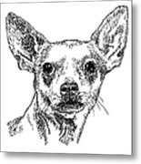 Chiwawa-portrait-drawing Metal Print