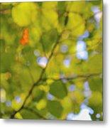 Chlorophyll Daydream Metal Print
