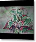 Christmas In July Metal Print by Patsy Sharpe