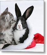 Christmas Kitten And Rabbit Metal Print