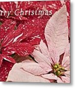 Christmas Poinsettias Metal Print
