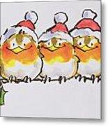 Christmas Robins Metal Print