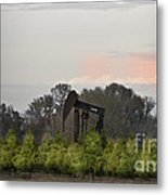 Christmas Tree Farm Metal Print