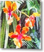 Chromaticorchids Metal Print by Anthony Caruso
