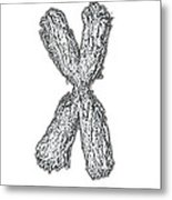 Chromosome Metal Print