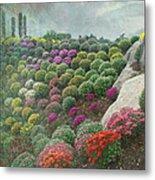 Chrysanthemum Garden - Ott's Greenhouse Schwenksville Pa Metal Print