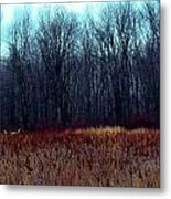 Cinnamon Fields Metal Print