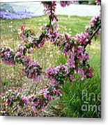 Circle Of Blossoms Metal Print