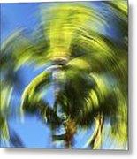 Circular Palm Blur Metal Print