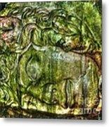 Cistern Medusa Metal Print by Michael Garyet