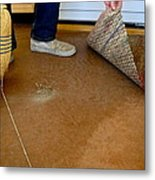 Cleaning House Metal Print
