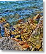 Clear Calm Collective  Metal Print