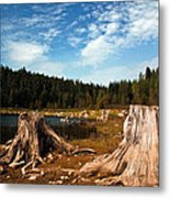 Clear Lake Oregon Metal Print