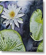 Clearwater Lilly Metal Print