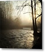 #cleveland #nature #metroparks Metal Print