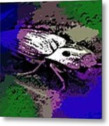 Click Beetle On Porsche Metal Print