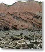 Cliffs At Joggins Nova Scotia Metal Print