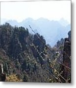 Cliffside Flowers Metal Print