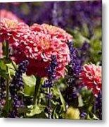Closeup Of Colorful Flowers In Butchart Metal Print
