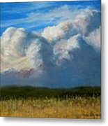 Clouds Over The Meadow Metal Print
