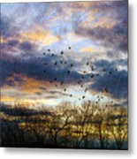 Cloudy Sunset With Bare Trees And Birds Flying Metal Print