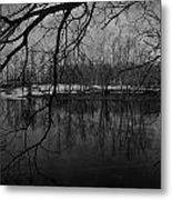 Clover Pond Metal Print
