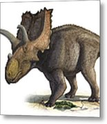 Coahuilaceratops Magnacuerna Metal Print