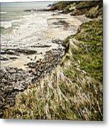 Coastal Grass Metal Print