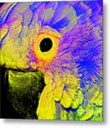 Cockatoo Of A Different Color Metal Print