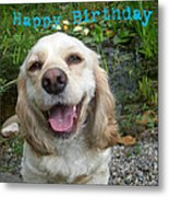 Cocker Spaniel Birthday Metal Print