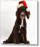 Cocker Spaniel With Santa Hat Metal Print