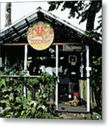Coconut Glen's Non-dairy Ice Cream Metal Print