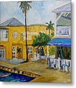 Coconut Tree In The Middle Metal Print