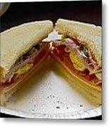 Cold Cut Sandwich Metal Print