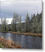 Cold Day On The Nemah River Metal Print