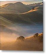 Cold Fog At Sunrise Metal Print