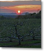 Cold Spring Orchard Metal Print