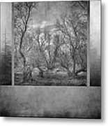 Collage Misty Trees Metal Print