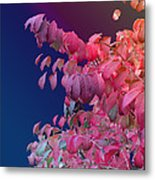 Color And Form Metal Print
