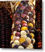 Color Corn Metal Print