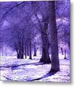 Color Infrared Winter Landscape Metal Print