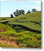 Color Me Green Metal Print