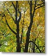 Color Me Yellow Metal Print